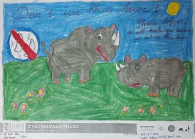 Wild Rhino Competition 2019 - Junior Winners - 8